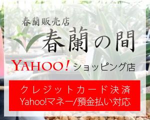 春蘭の間Yahooショッピング店